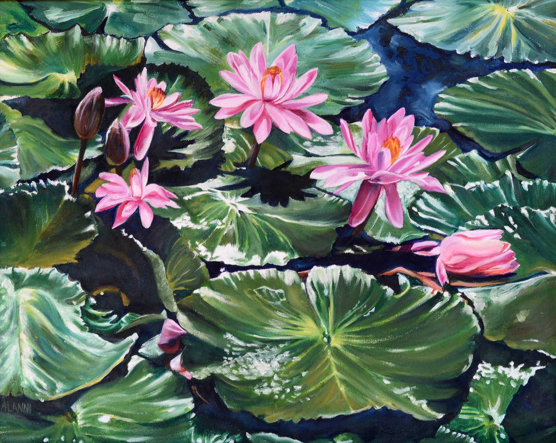 pink water lilies oil painting